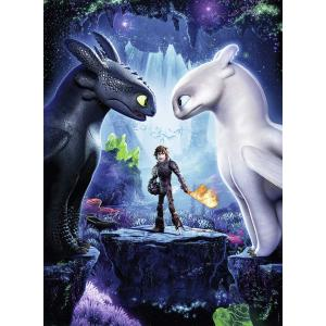 Nathan puzzles - 86848 - Puzzle 150 pièces - Les héros réunis / Dragons 3 (404310)