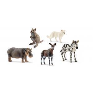 Schleich - bu036 - Figurines Animaux sauvages (Okapi, Hippopotame, Zébreau, Renard, Quokka) (411952)