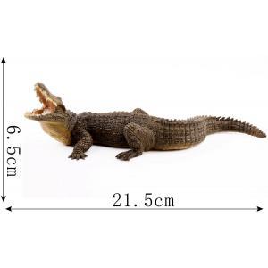 Papo - 50055 - Figurine Crocodile du Nil (41669)