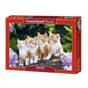 Castorland - 101344 - Puzzle 1000 pièces - L'Equipe de Chats (41764)