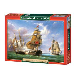 Castorland - 300037 - Puzzle 3000 pièces - Copie de Combat…, 21 Avril 1806, P.J. Gilbert (41836)