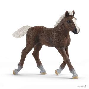 Schleich - 13899 - Figurine Poulain Forêt Noire - Dimension : 8 cm x 2,2 cm x 7,5 cm (420132)