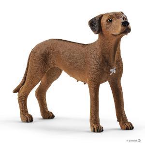 Schleich - 13895 - Figurine Chien de Rhodésie à crête dorsale - Dimension : 6,5 cm x 2 cm x 5,1 cm (420140)