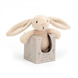 Jellycat - MYF4BR - My Friend Bunny Rattle - 12 cm (420180)