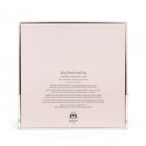 Jellycat - BTBB2SET - Coffret naissance lapin Bedtime Blossom lange + peluche - 18 cm (420202)