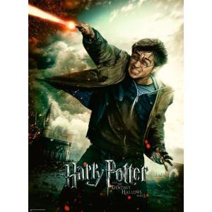 Harry Potter - 12869 - Puzzle 100 pièces XXL - Le monde fantastique d'Harry Potter (426438)