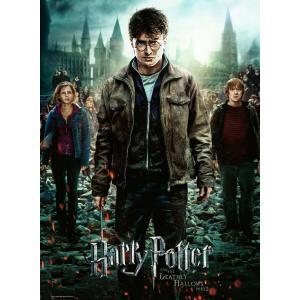 Harry Potter - 12871 - Puzzle 300 pièces XXL - Harry Potter et les Reliques de la Mort II (426478)