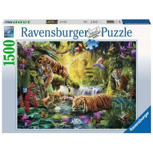 Ravensburger - 16005 - Puzzle 1500 pièces - Tigres au plan d'eau (426544)