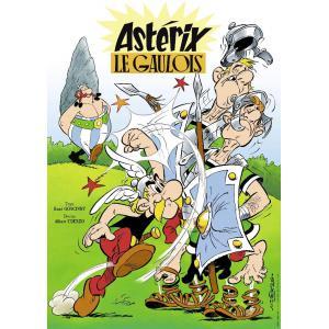 Nathan puzzles - 87626 - Puzzle 1000 pièces - Astérix Le Gaulois (426762)
