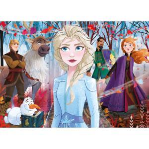 Clementoni - 21307 - Puzzle enfants 2x20+2x60 Pièces - La Reine des Neiges 2 (427056)