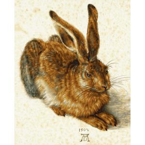 Schipper - 609130809 - Peinture aux numéros - La jeune lièvre 40x50cm (430576)