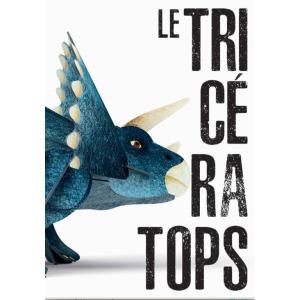 Sassi - 301320 - L'ère des dinosaures - triceratops 3d - âge conseillé : 6 ans (436470)