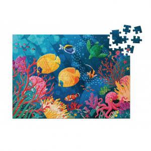 Sassi - 304796 - La planète en danger. Le récif corallien - âge conseillé : 5 ans (457014)