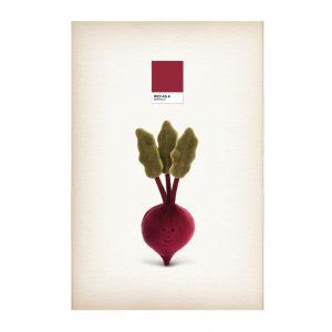 Jellycat - VV6BEET - Peluche légume betterave Vivacious - l = 8 x H = 22 cm (457524)