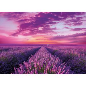 Clementoni - 39606 - Puzzle 1000 pièces - Lavender Field (460078)