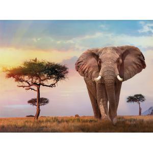 Clementoni - 35096 - Puzzle 500 pièces - African Sunset (460112)