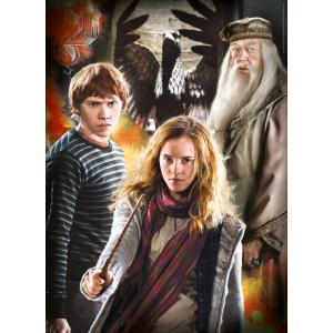 Clementoni - 61884 - Puzzle Harry Potter - 3x1000 pièces (460170)