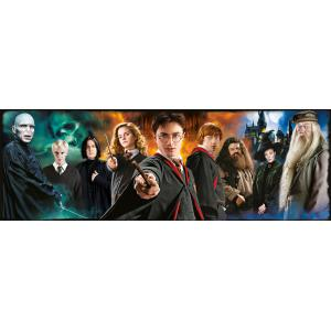 Harry Potter - 61883 - Puzzle Harry Potter - Panorama 1000 pièces (460176)
