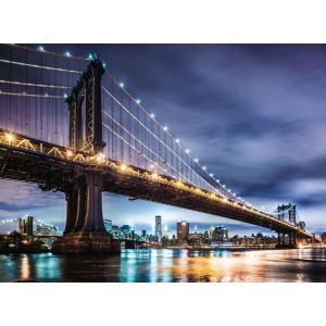 Ravensburger - 16589 - Puzzle 500 pièces - New York, la ville qui ne dort jamais (461348)