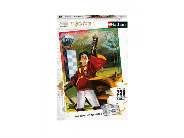 Puzzle 250 pièces - la passion du quidditch / harry potter