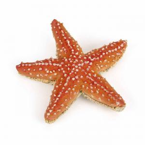 Papo - 56050 - Etoile de mer - Dim. 7 cm x 2 cm x 6,7 cm (464574)