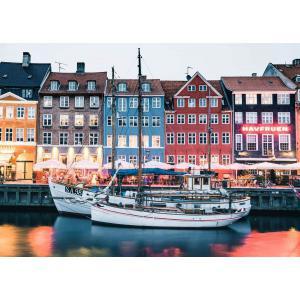 Ravensburger - 16739 - Puzzle 1000 pièces - Copenhague,Danemark (Puzzle Highlights) (470218)