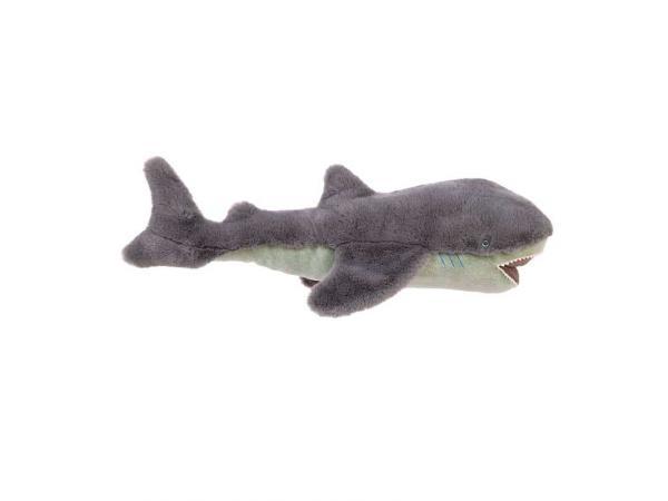 Grand requin tout autour du monde