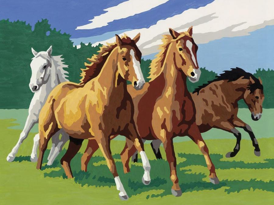 Ravensburger num ro d 39 art grand format chevaux sauvages - Photo d art grand format ...